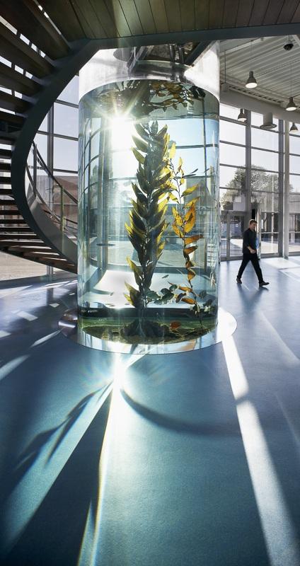 Aquarium Mare Nostrum à Montpellier - Client: Spie et Technal - Architecte: Jean Chabanne
