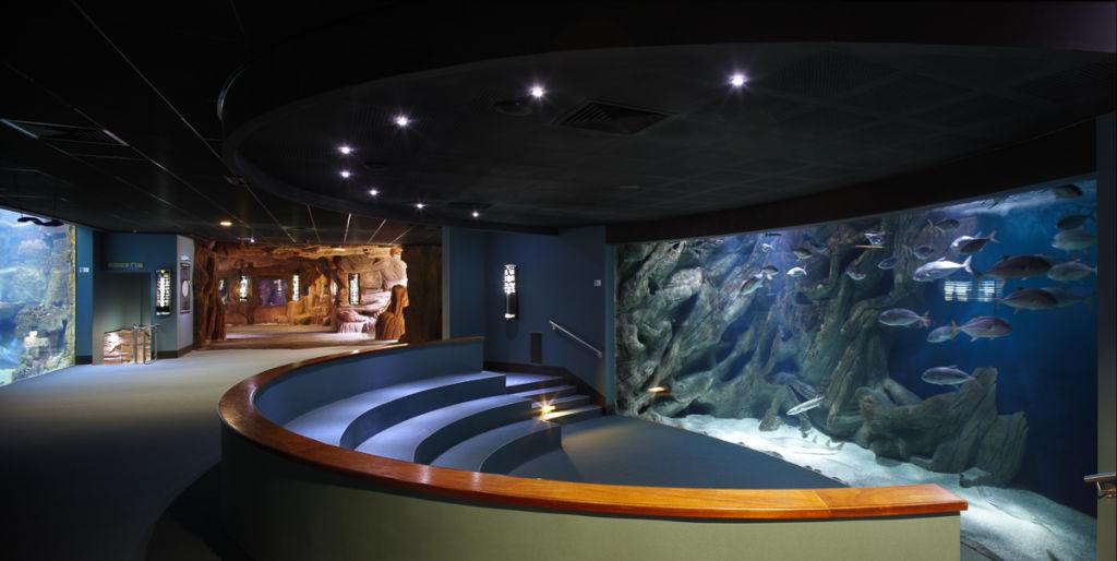 Aquarium de La Rochelle (17) - Client : Osram