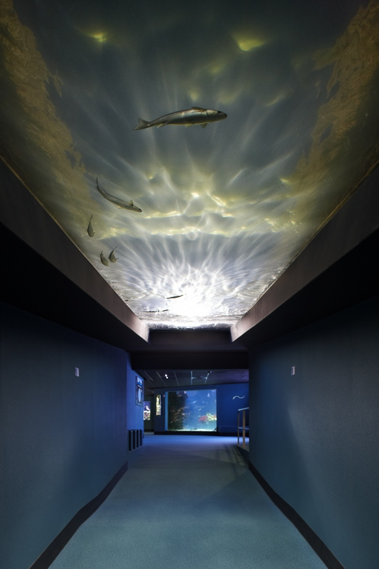 Aquarium de La Rochelle - Client: Osram