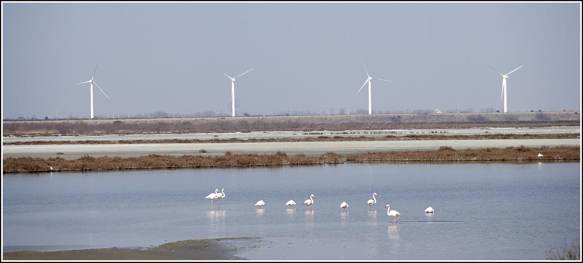 Parc éolien de Port Saint Louis - Client : Vinci Energies